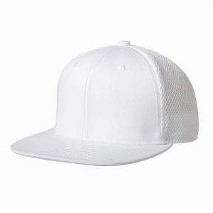 Kingcap_original_snap_back_aimesh_pet_Wit